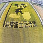 上海迪士尼 熱鬧開場敲鑼